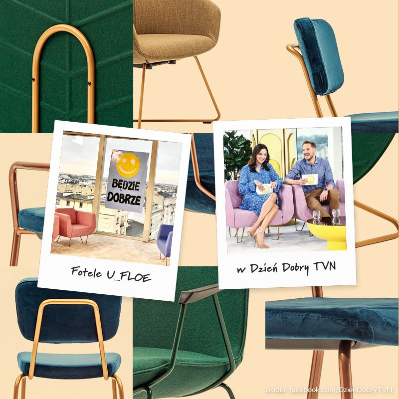 fotele u_floe dzien dobry tvn
